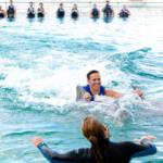 dolphin royal swim oahu