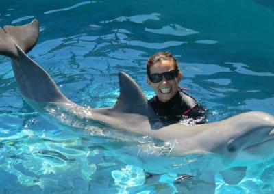 Oahu Dolphin Trainer Hawaii