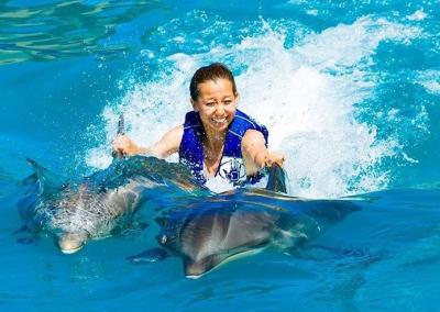 Royal Dolphin Swim