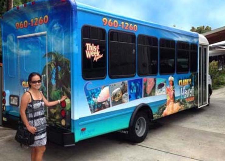 Free Transportation to Sea Life Park
