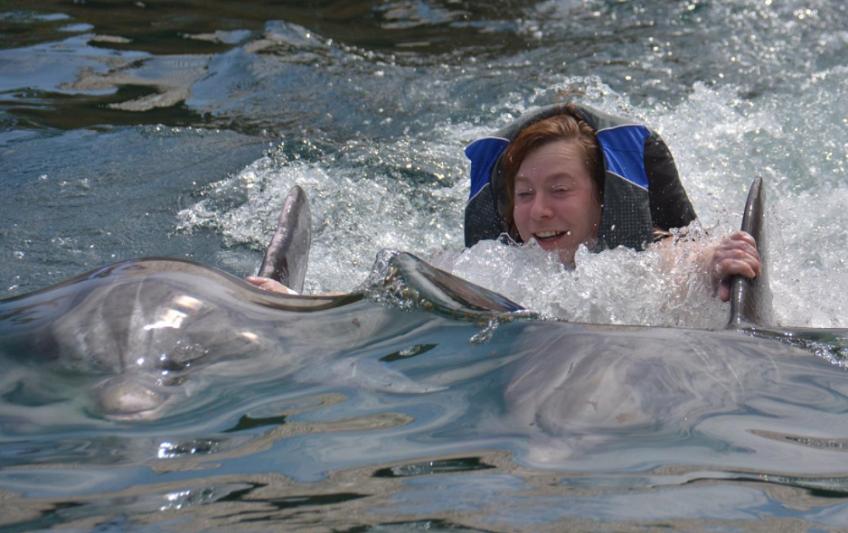 Free Photos with Oahu Dolphin Royal Swim