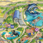 sea life park dolphin shows and map