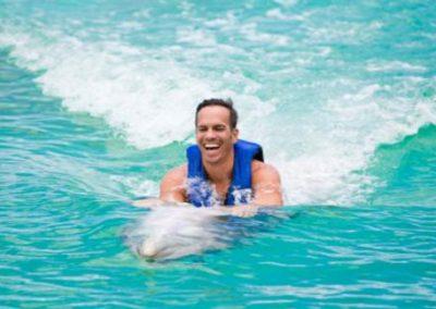 Dolphin Exploration Oahu Hawaii
