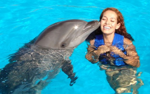 In Water Kiss with dolphin Oahu Hawaii