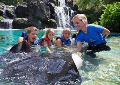 Hawaii Reef Adventure